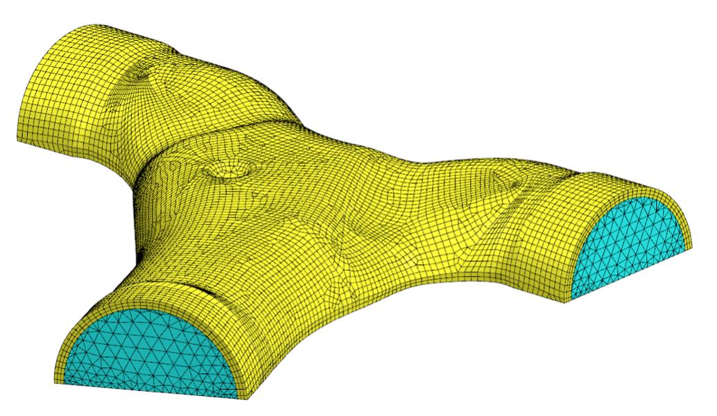 Całkowita siatka obliczeniowa wraz z warstwą przyścienną utworzona w Simcenter 3D